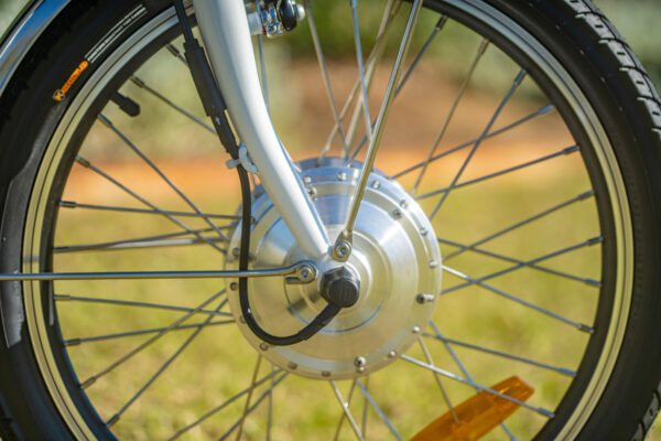 Trike Disk Brakes